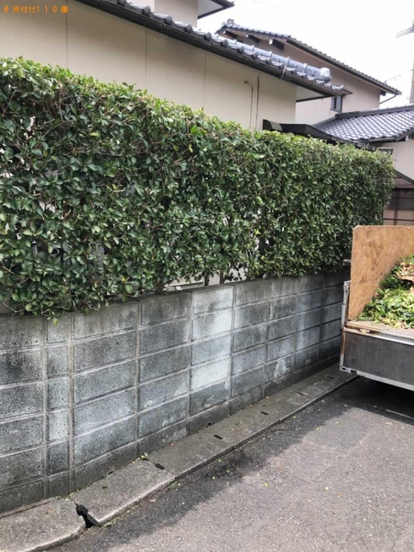 庭木剪定サービス施工後