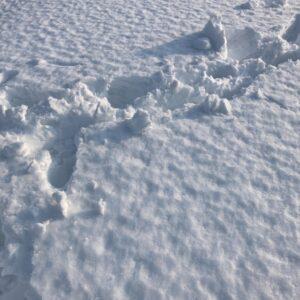 【岩見沢市】屋根の雪の除雪ご依頼 お客様の声