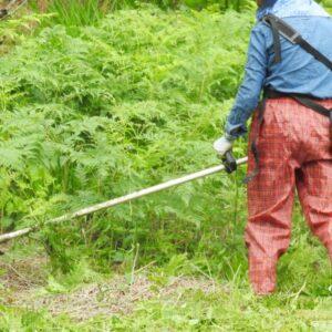 芦別市で草刈りにかかる料金相場は?追加料金や業者選びのコツまで解説
