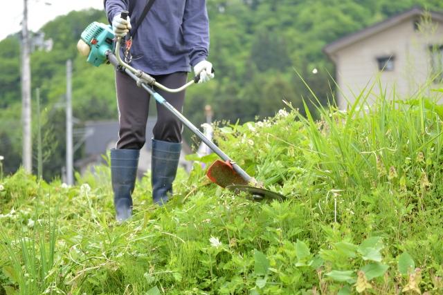 新冠町で草刈りに最適な年3回の時期~楽に草刈りを終えるコツまで徹底解説